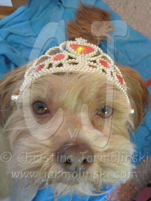 I'm the princess